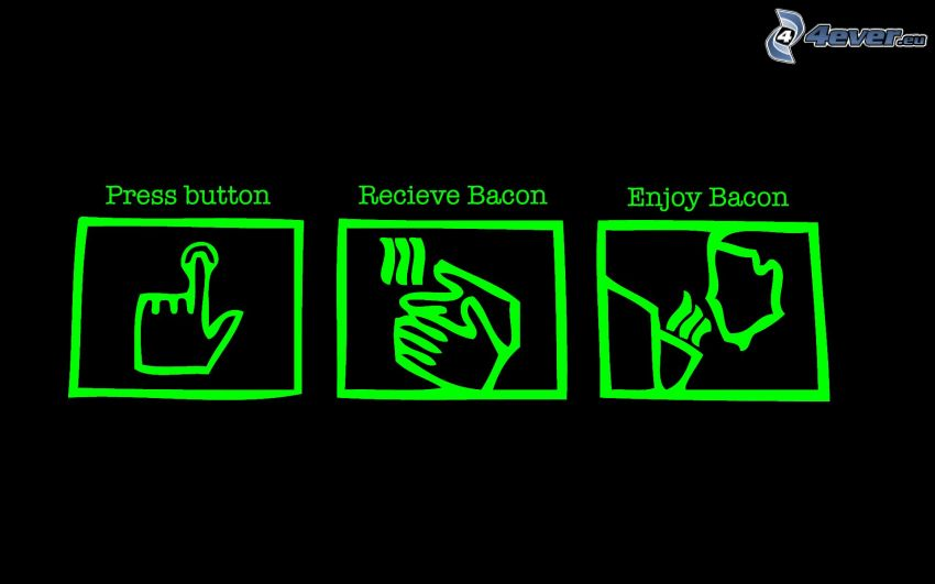 icons, instructions, bacon