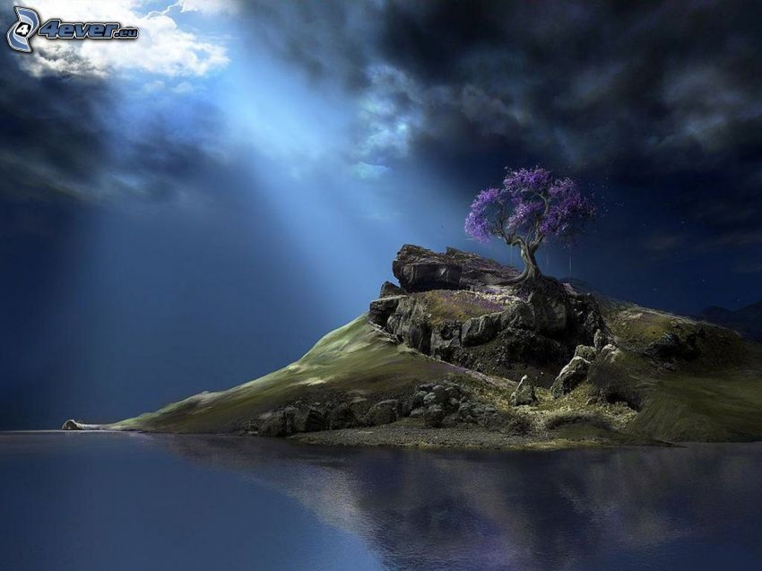 island, purple tree, dark clouds, reflection
