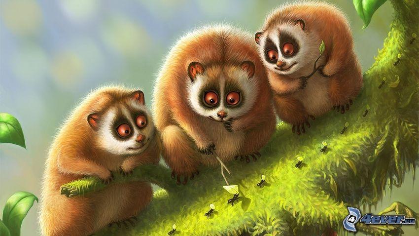 lemurs, ants
