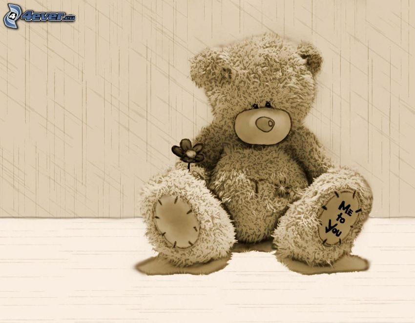 Me to You, teddy bear