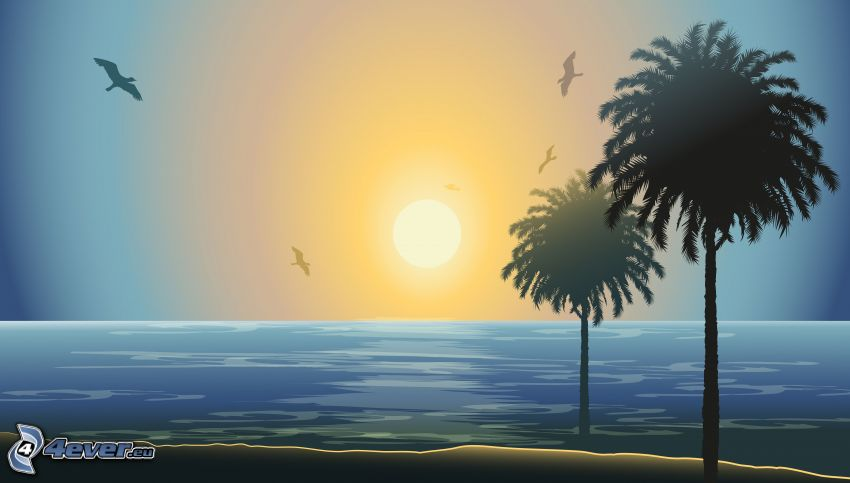palm trees, silhouette, sunset over the sea, gulls