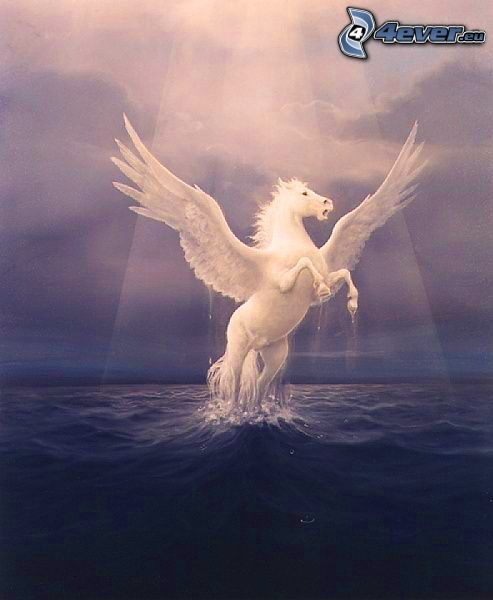Pegasus, glow, sea