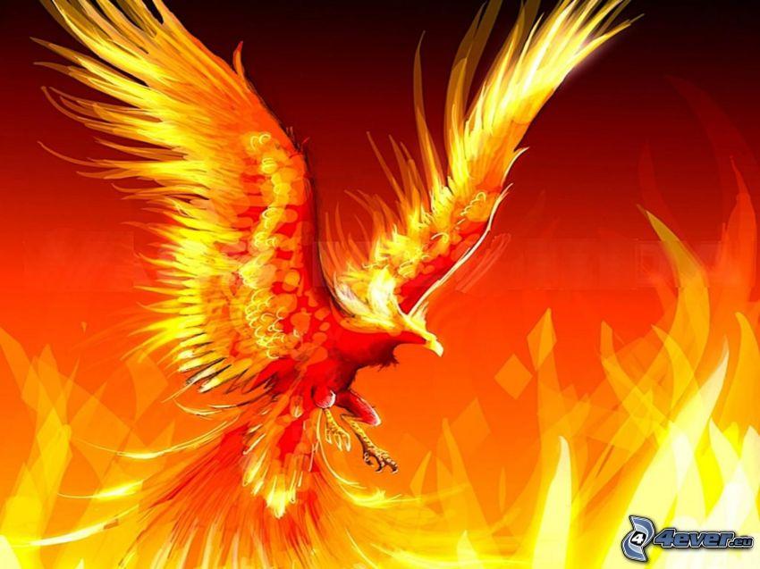 Phoenix, fiery bird