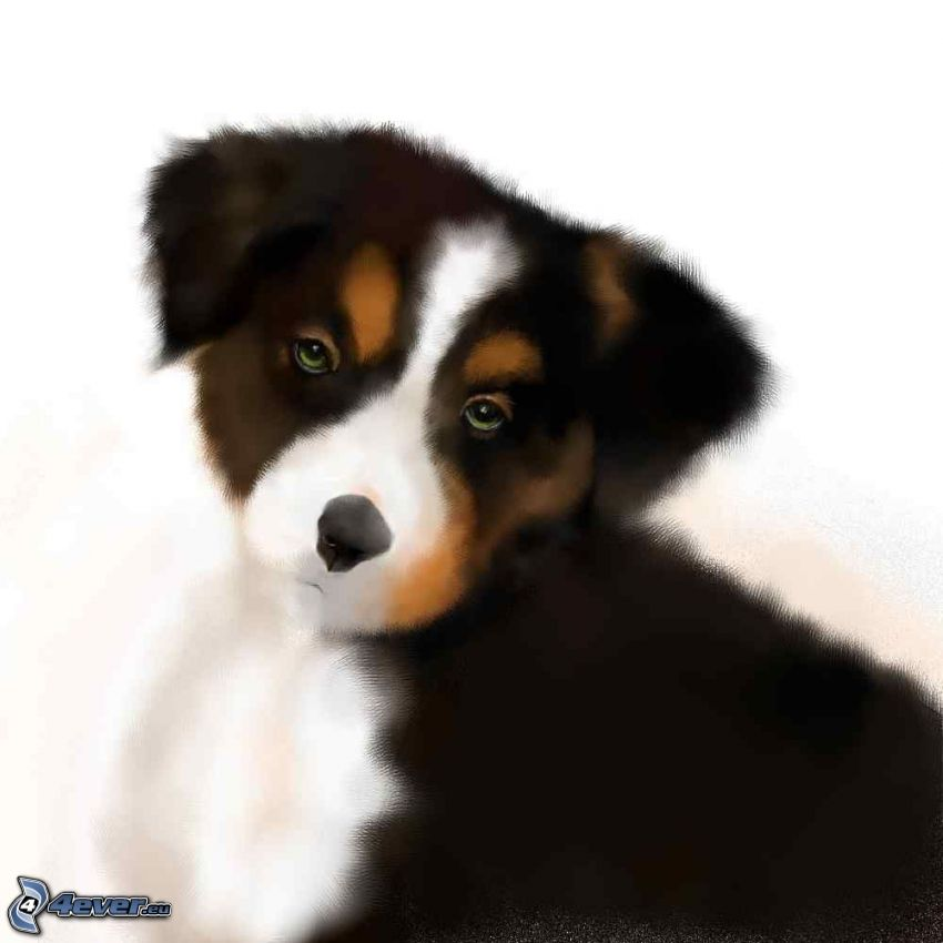 puppy, painting