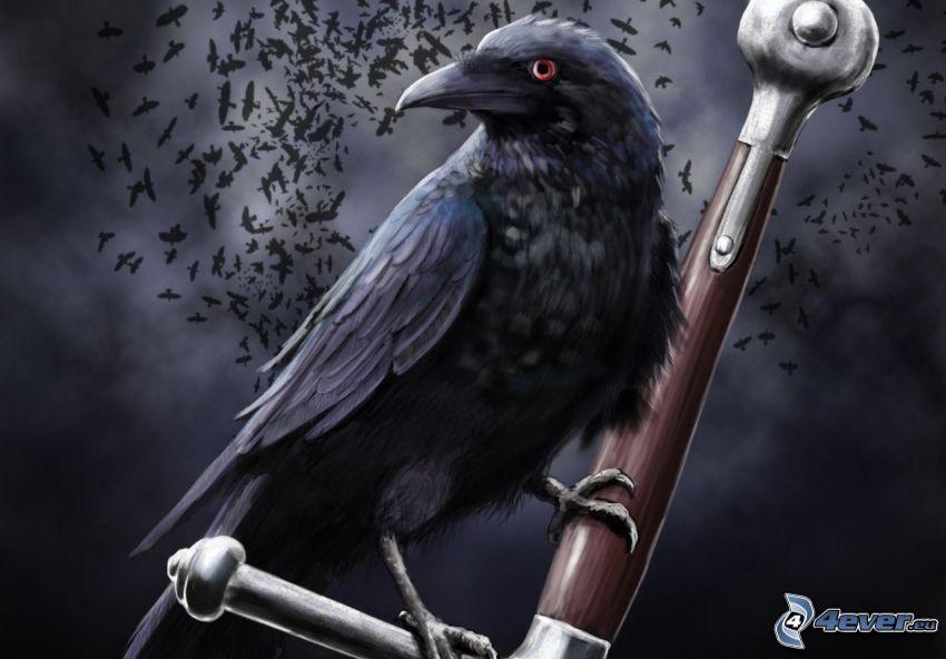 raven, sword
