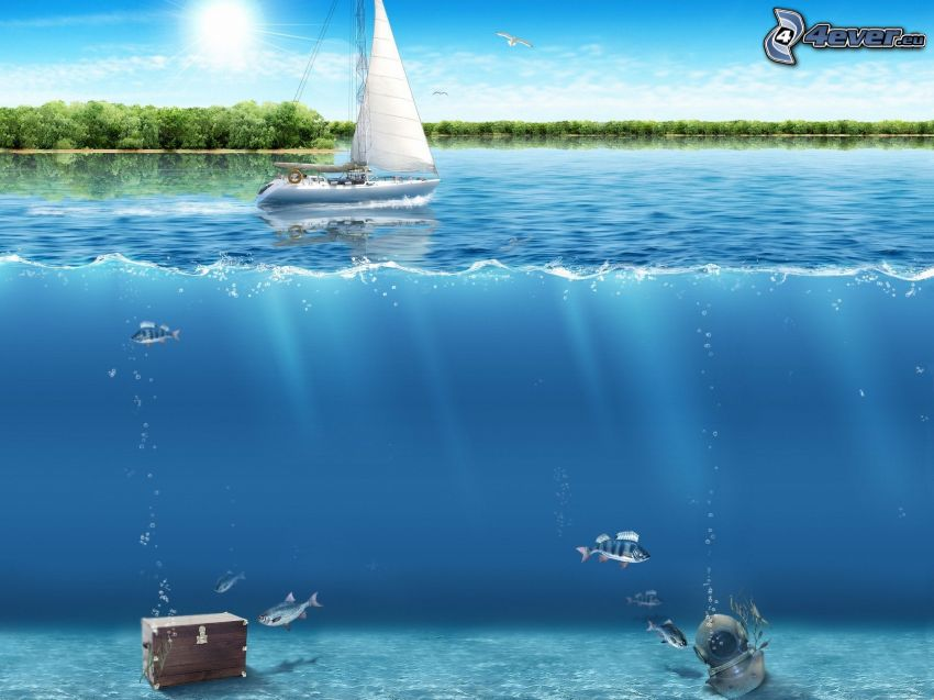 sea, sailing boat, fish, treasure