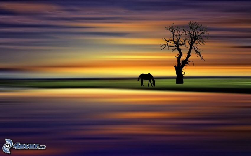 silhouettes of horses, silhouette of tree