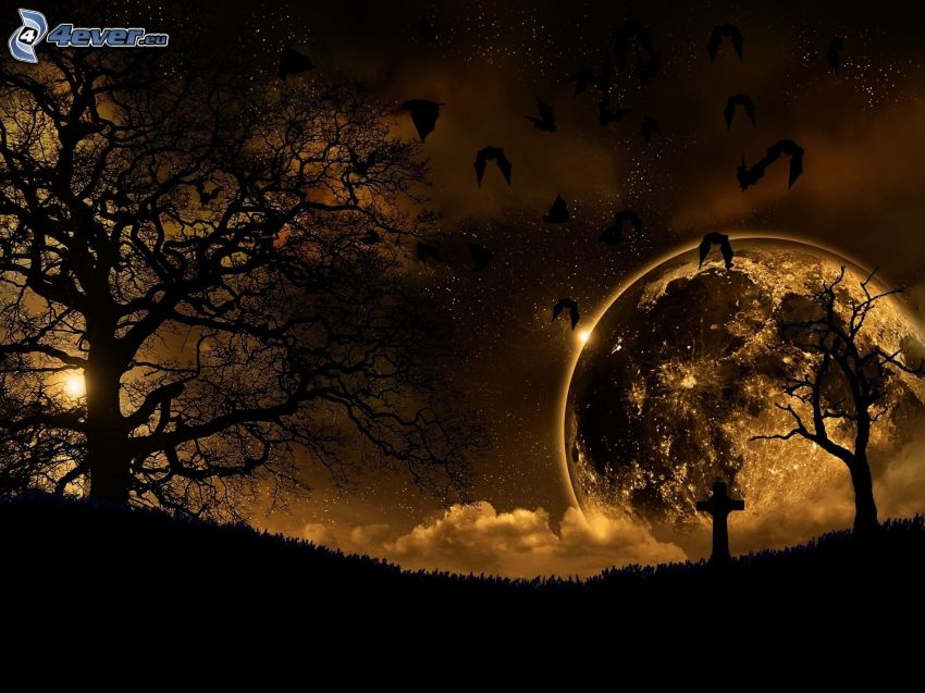 silhouettes of the trees, bats, moon, cross