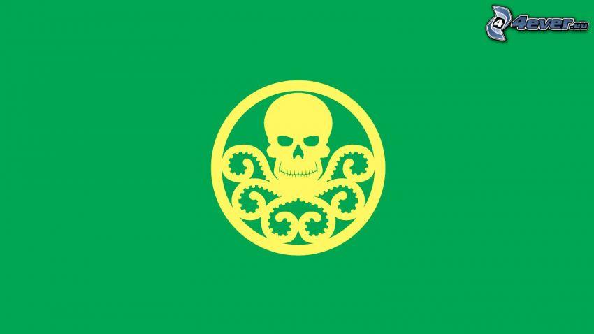 skull, octopus