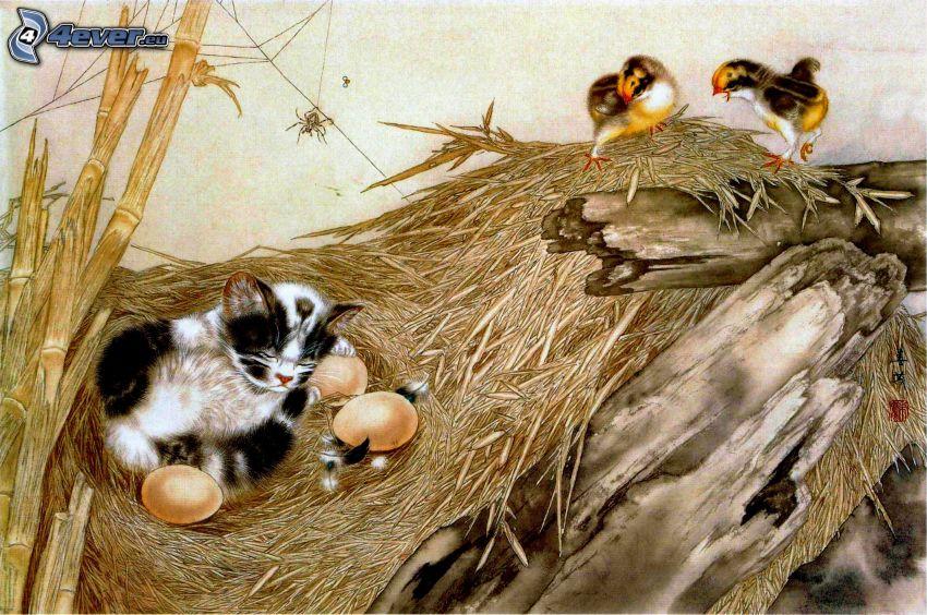 sleeping kitten, nest, eggs, birds