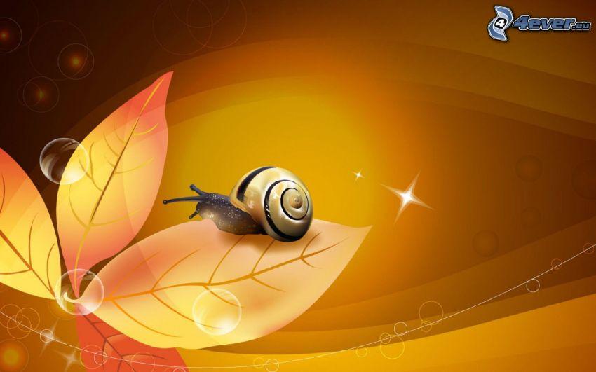 snail, leaves, bubbles, stars