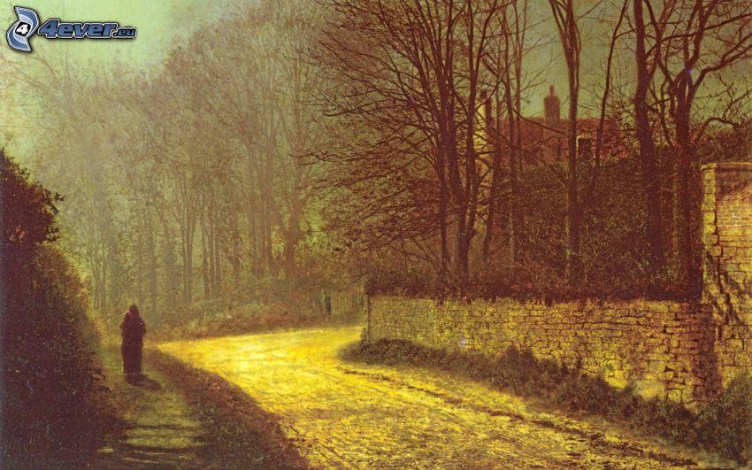 street, trees, wall