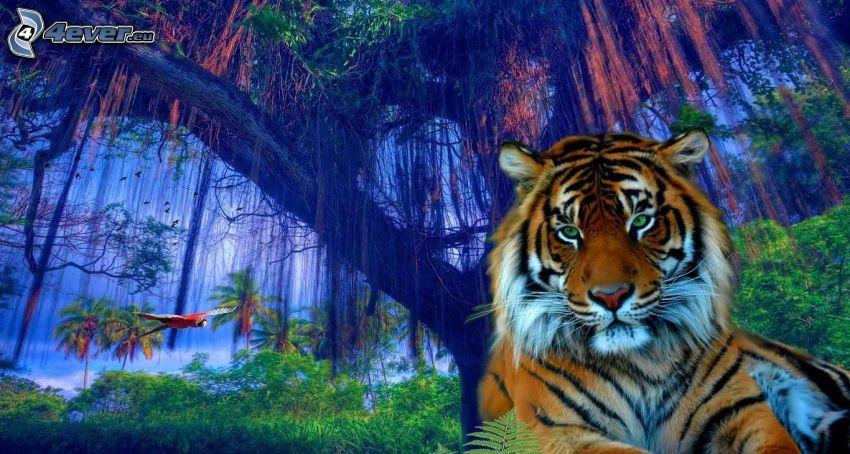 tiger, rainforest, parrot Ara