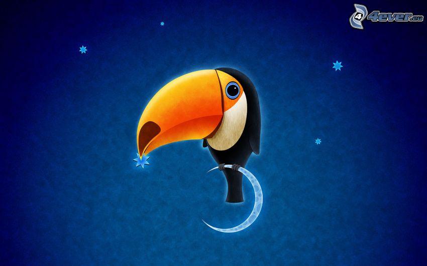 toucan, moon