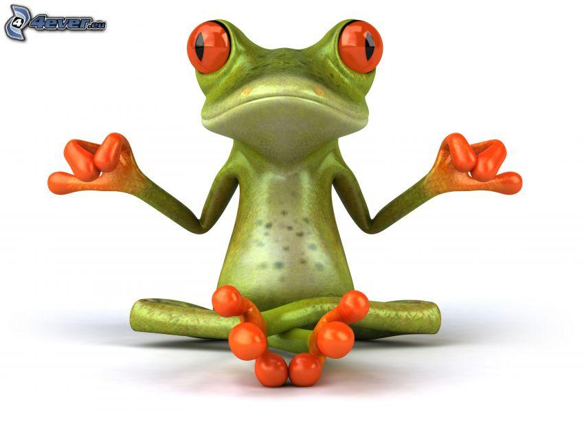 tree-frog, meditation