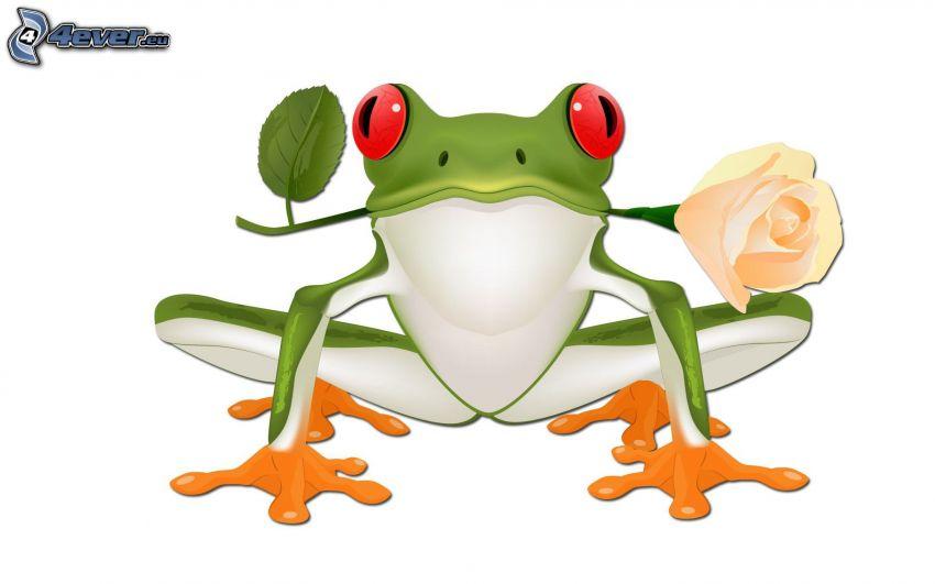 tree-frog, rose