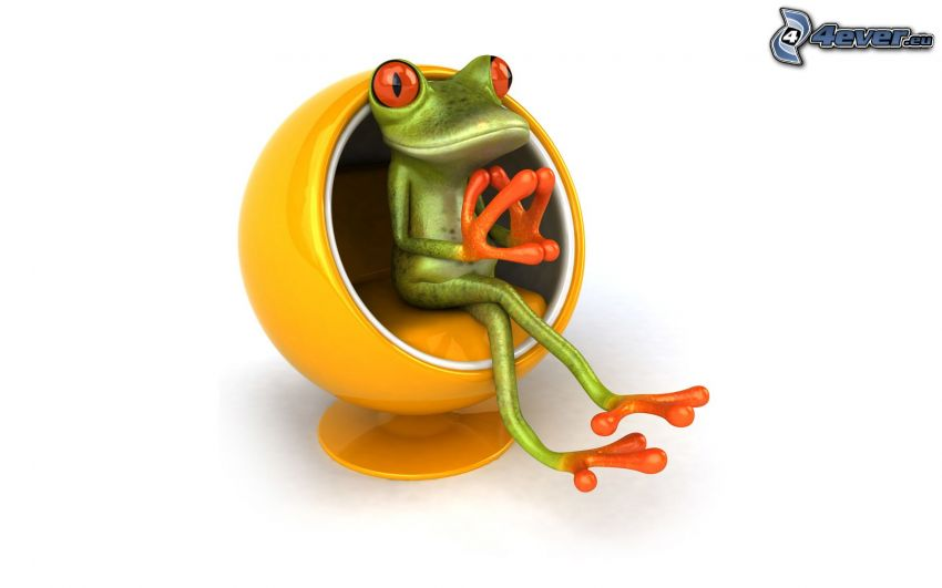 tree-frog, sofa