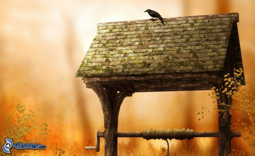 water well, raven