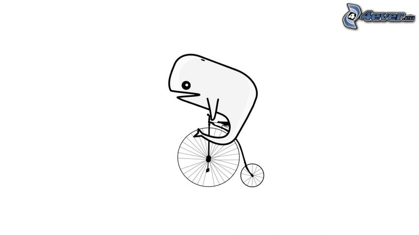 whale, bicycle