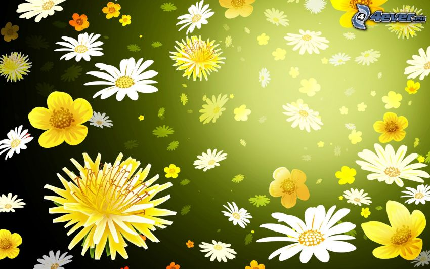 white flowers, yellow flowers, green background