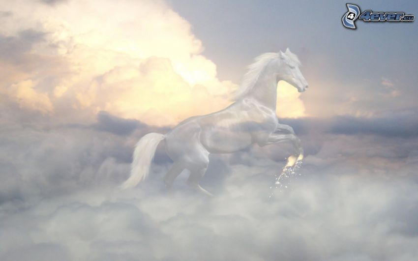 white horse, clouds