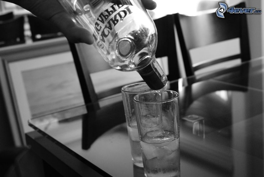 alcohol, glasses, ice cubes, bottle, black and white