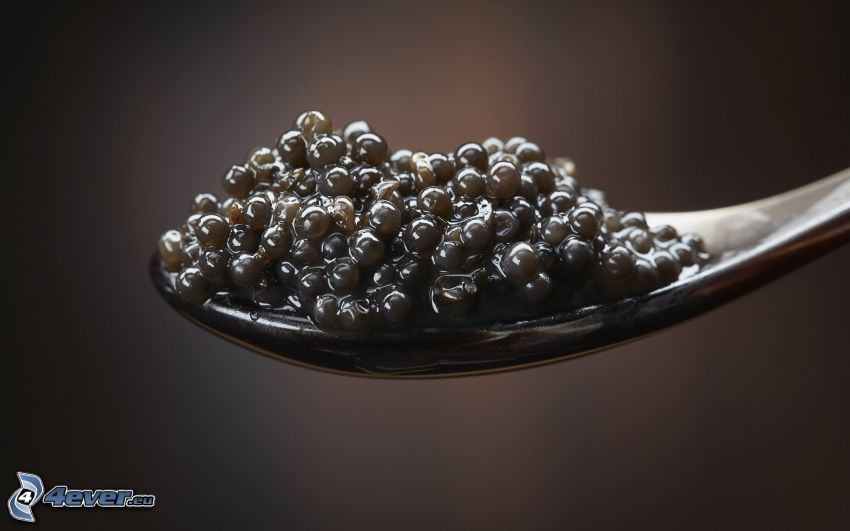 caviar, spoon