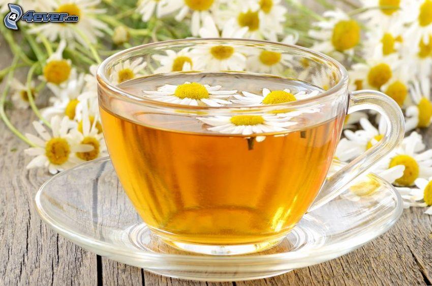 chamomile tea, chamomiles