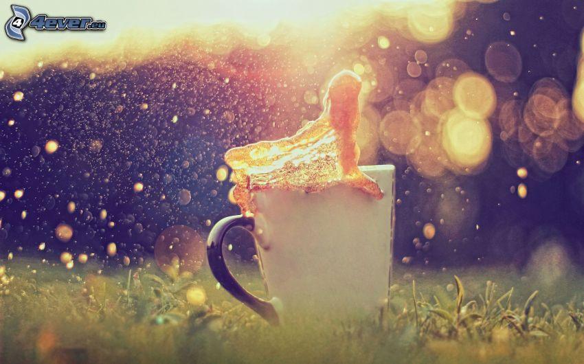cup, splash