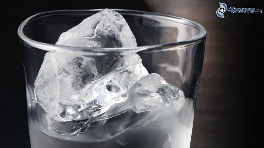 cup, water, ice cubes, black and white