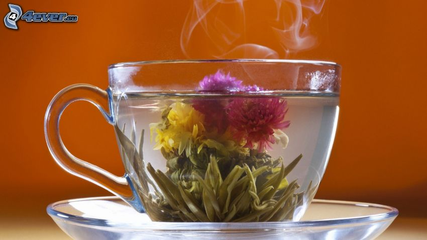 flowering tea, cup of tea