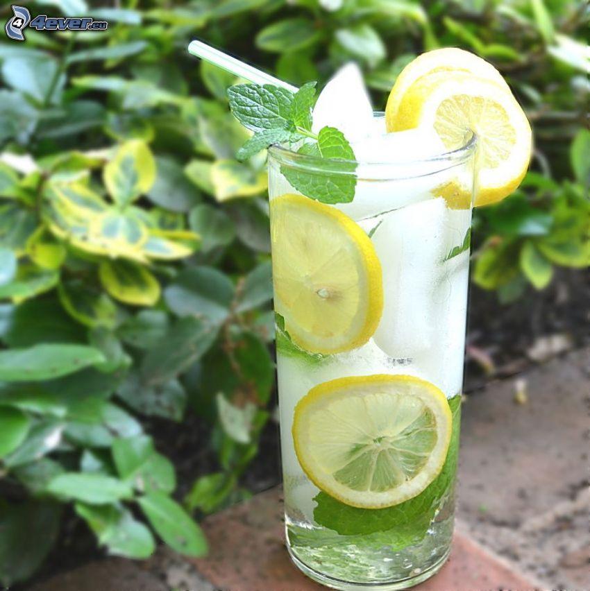 mojito, lemons, mint