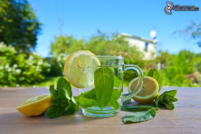 peppermint tea, lemons
