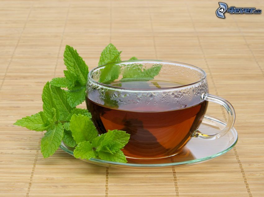 peppermint tea, mint