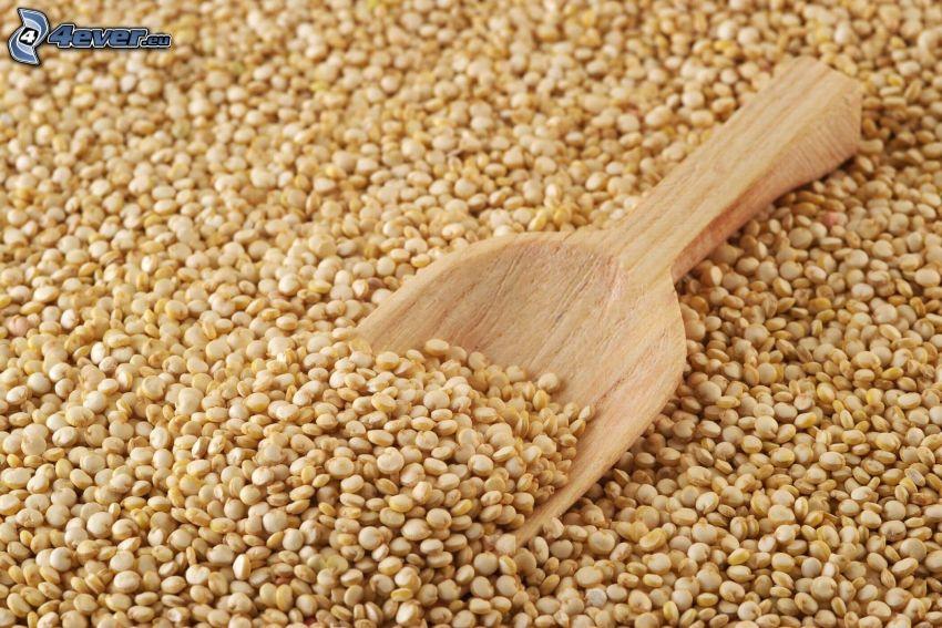 Quinoa, scoop