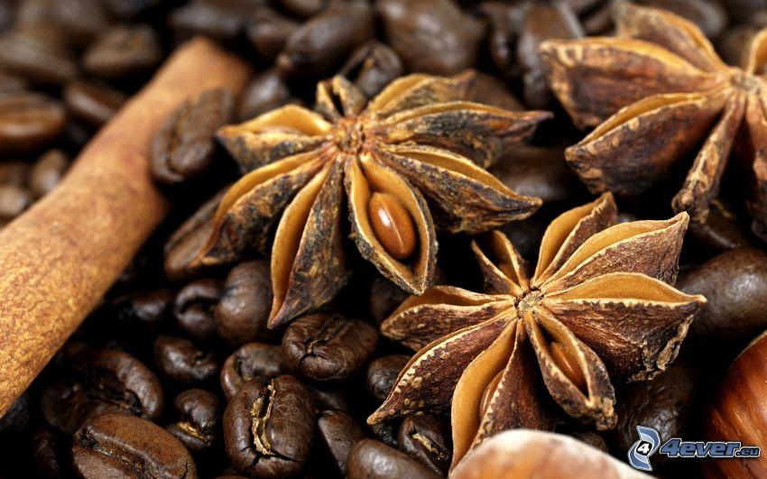 Star anise, cinnamon