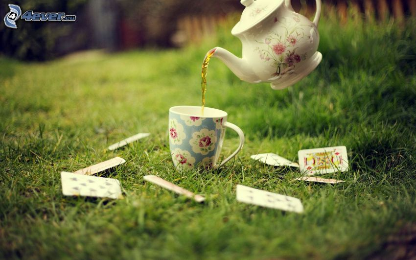teapot, cup of tea, cards, grass