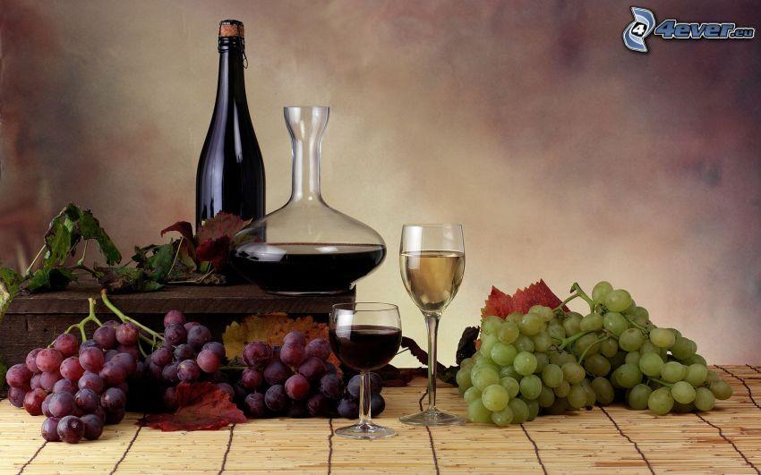 wine, grapes