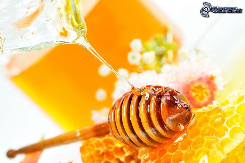 wooden honey stick, honey