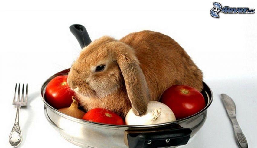 bunny, tomatoes, garlic, onion, cutlery, food