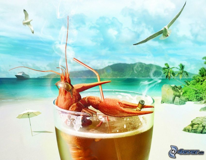 lobster, cigarette, cup, straw, beach, sea, gulls, comfort