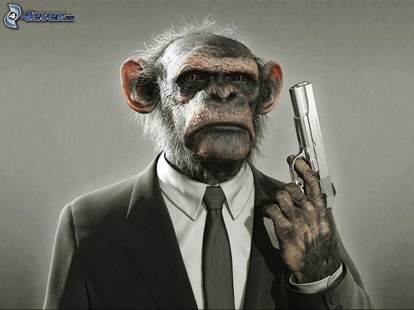 monkey, pistol, suit