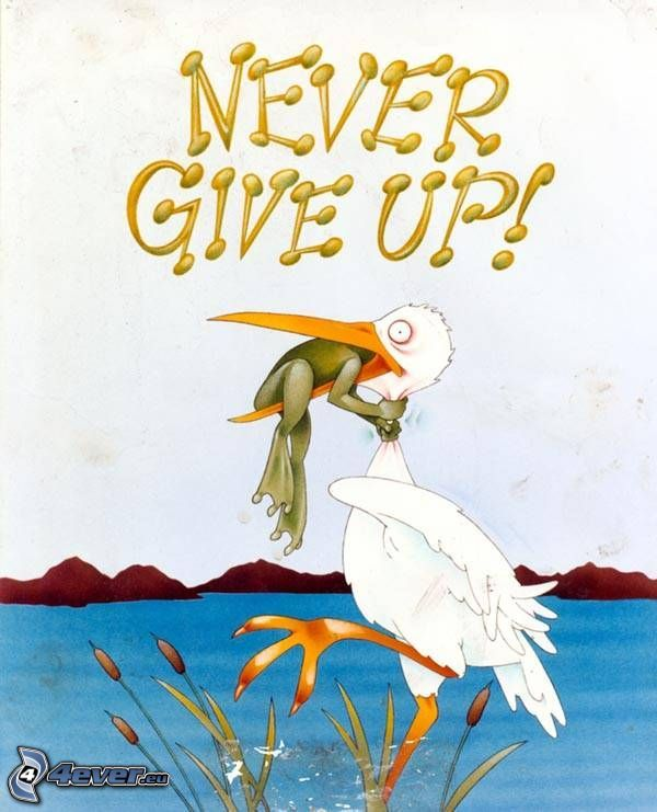 never, frog, stork, life, text
