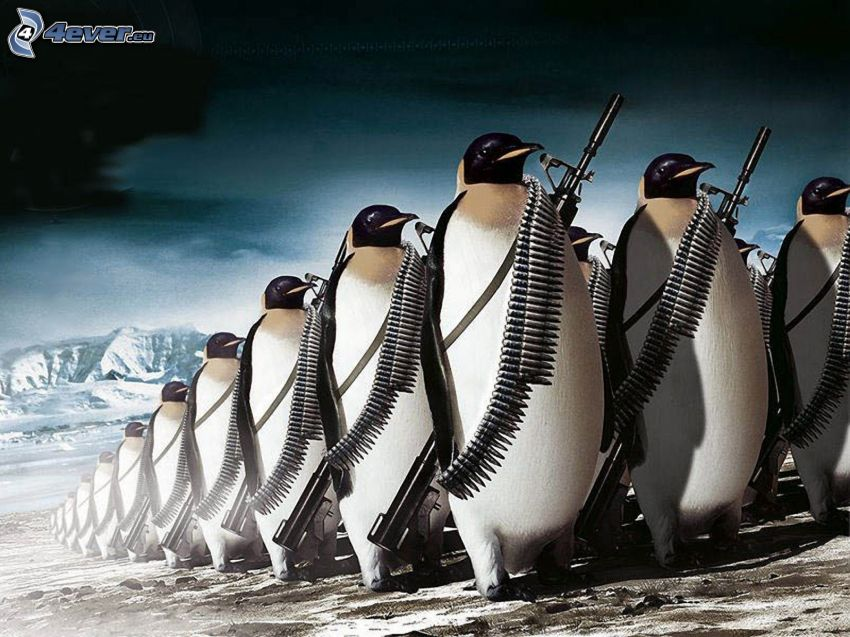 penguins, soldiers
