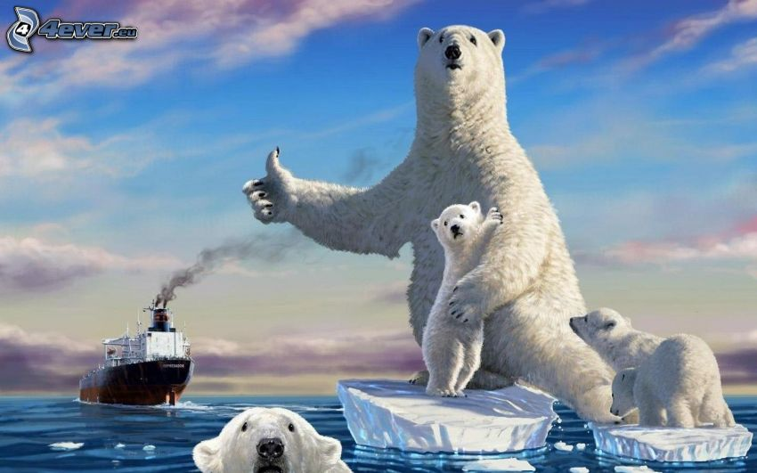 polar bears, cubs, ship, ice floe, thumbs up