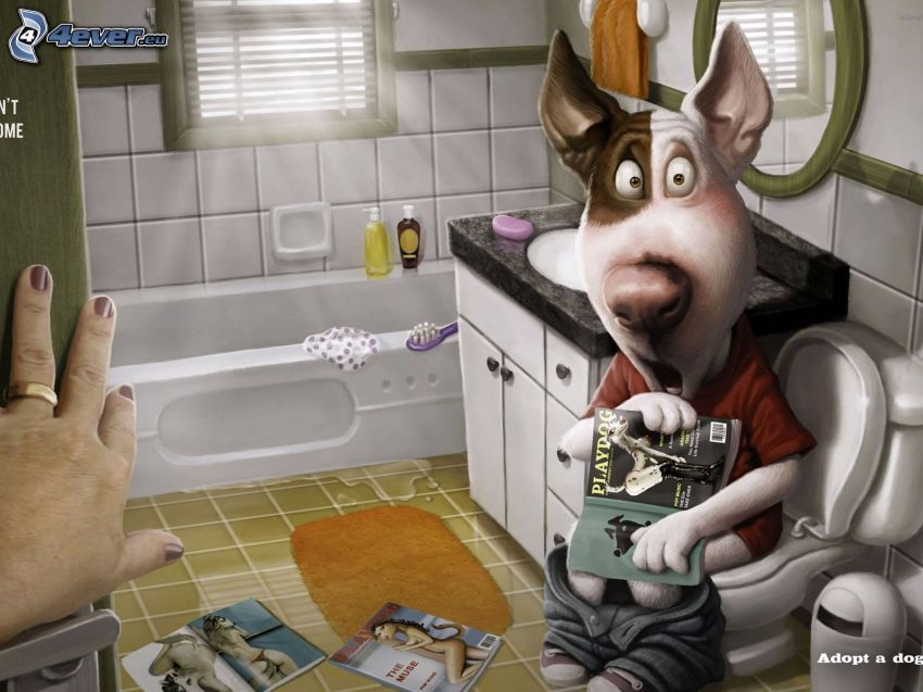 cartoon dog, toilet, Playboy, bathroom, hand, unpleasant surprise