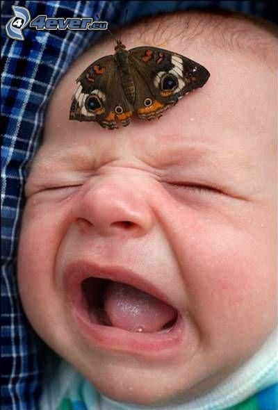 butterfly on head, crying baby