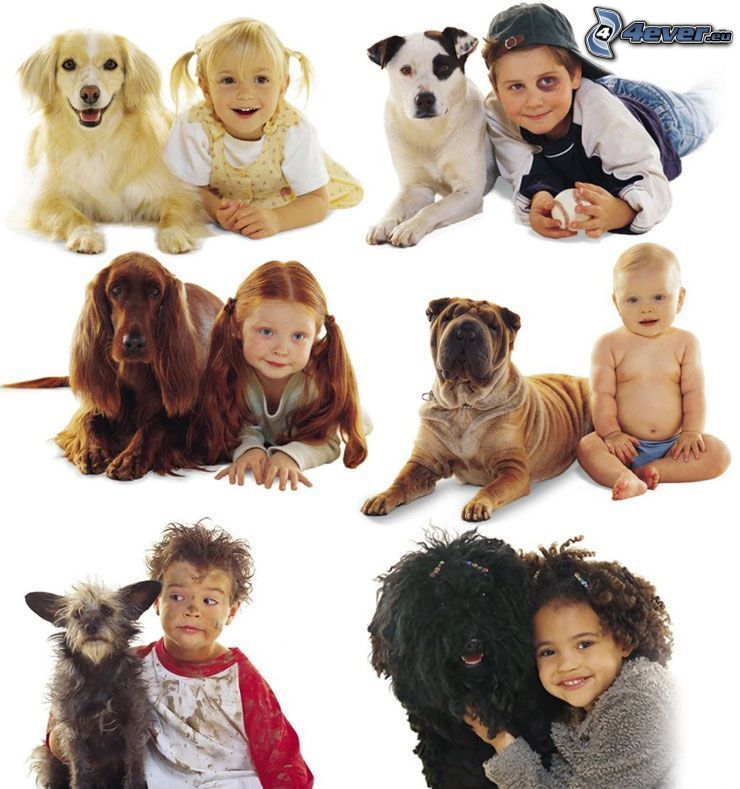 dog and his master, dogs, children