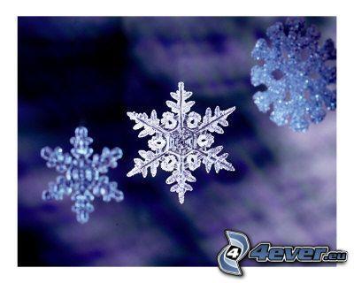 christmas, snow flake