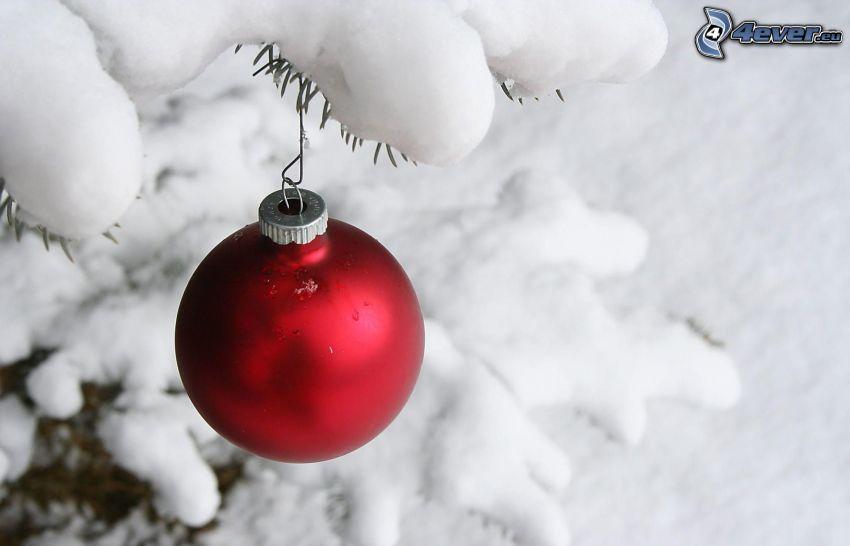 christmas ball, snow, conifer twig
